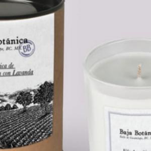 Presentacion_Vela_Baja_Botanica